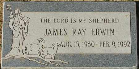 ERWIN, JAMES RAY - Maricopa County, Arizona | JAMES RAY ERWIN - Arizona Gravestone Photos