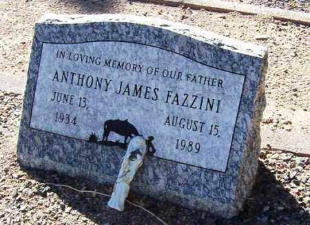 FAZZINI, ANTHONY JAMES - Maricopa County, Arizona | ANTHONY JAMES FAZZINI - Arizona Gravestone Photos