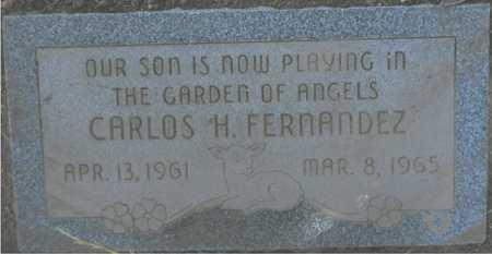 FERNANDEZ, CARLOS H. - Maricopa County, Arizona | CARLOS H. FERNANDEZ - Arizona Gravestone Photos