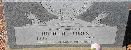FLORES, ANTONIA - Maricopa County, Arizona   ANTONIA FLORES - Arizona Gravestone Photos