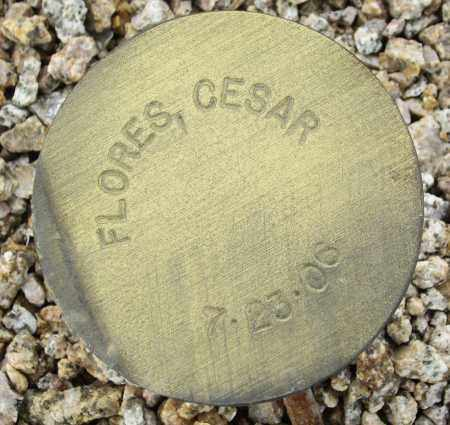 FLORES, CESAR - Maricopa County, Arizona | CESAR FLORES - Arizona Gravestone Photos
