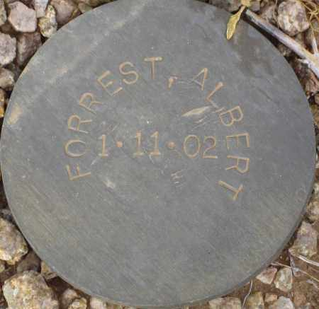FORREST, ALBERT - Maricopa County, Arizona | ALBERT FORREST - Arizona Gravestone Photos