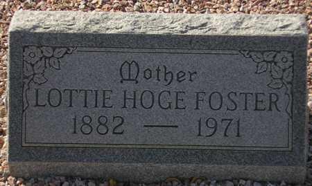 ` FOSTER, LOTTIE HOGE - Maricopa County, Arizona | LOTTIE HOGE ` FOSTER - Arizona Gravestone Photos