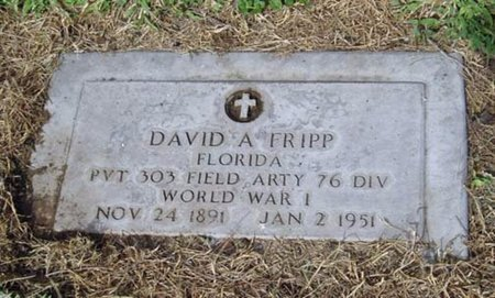 FRIPP, DAVID A. - Maricopa County, Arizona   DAVID A. FRIPP - Arizona Gravestone Photos