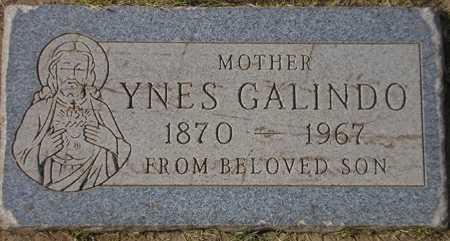 GALINDO, YNES - Maricopa County, Arizona   YNES GALINDO - Arizona Gravestone Photos