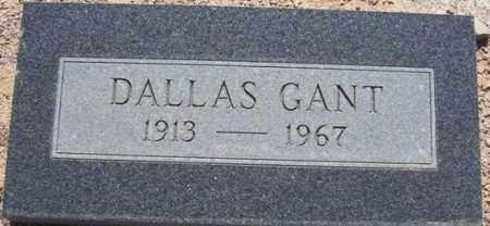 GANT, DALLAS COOPER - Maricopa County, Arizona | DALLAS COOPER GANT - Arizona Gravestone Photos