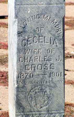 GROSS, CECELIA D - Maricopa County, Arizona | CECELIA D GROSS - Arizona Gravestone Photos