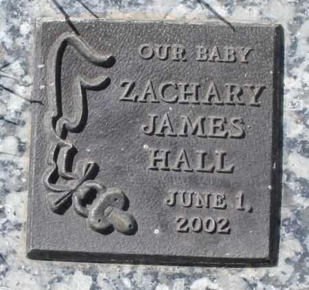 HALL, ZACHARY JAMES - Maricopa County, Arizona | ZACHARY JAMES HALL - Arizona Gravestone Photos