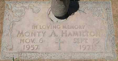 HAMILTON, MONTY A. - Maricopa County, Arizona | MONTY A. HAMILTON - Arizona Gravestone Photos