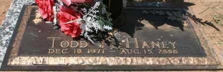 HANEY, TODD A. - Maricopa County, Arizona | TODD A. HANEY - Arizona Gravestone Photos