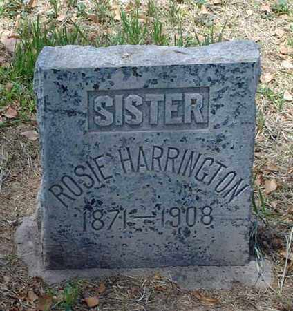 HARRINGTON, ROSIE - Maricopa County, Arizona | ROSIE HARRINGTON - Arizona Gravestone Photos