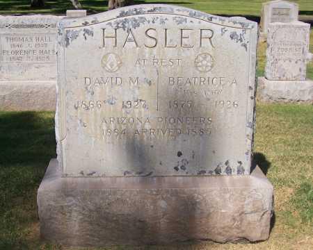 HASLER, DAVID M. - Maricopa County, Arizona | DAVID M. HASLER - Arizona Gravestone Photos