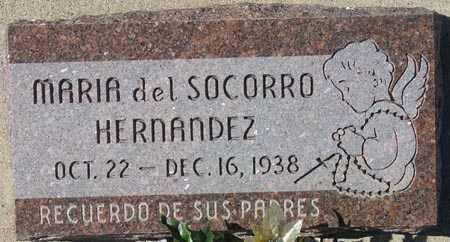 HERNANDEZ, MARIA DEL SOCORRO - Maricopa County, Arizona | MARIA DEL SOCORRO HERNANDEZ - Arizona Gravestone Photos