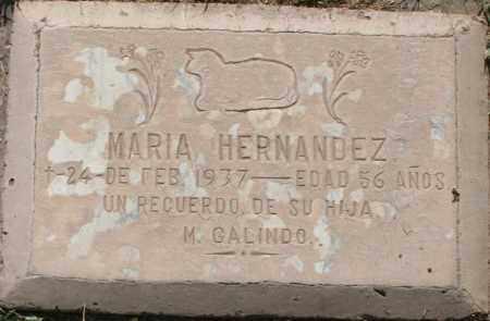 HERNANDEZ, MARIA - Maricopa County, Arizona | MARIA HERNANDEZ - Arizona Gravestone Photos