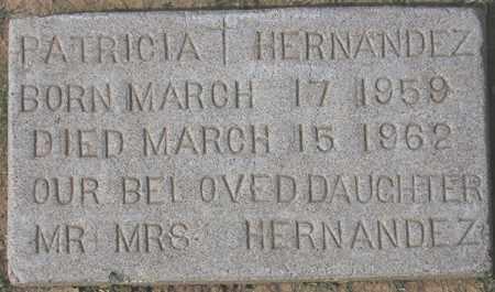 HERNANDEZ, PATRICIA - Maricopa County, Arizona | PATRICIA HERNANDEZ - Arizona Gravestone Photos
