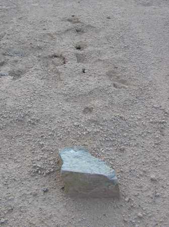 HILL, CHARLES - Maricopa County, Arizona | CHARLES HILL - Arizona Gravestone Photos