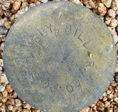 HIVELY, BILL R. - Maricopa County, Arizona | BILL R. HIVELY - Arizona Gravestone Photos