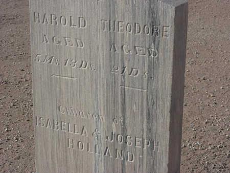 HOLLAND, HAROLD - Maricopa County, Arizona | HAROLD HOLLAND - Arizona Gravestone Photos