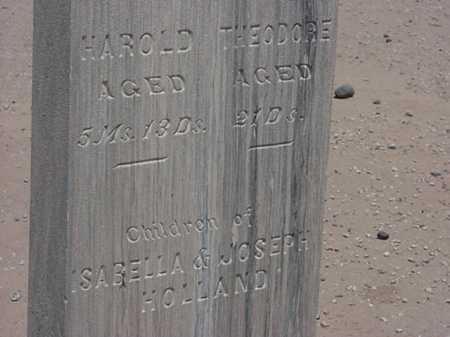 HOLLAND, THEODORE - Maricopa County, Arizona | THEODORE HOLLAND - Arizona Gravestone Photos