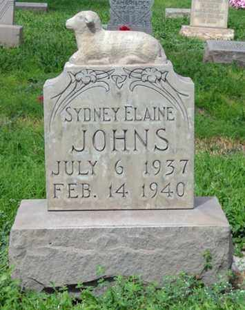JOHNS, SYDNEY ELAINE - Maricopa County, Arizona | SYDNEY ELAINE JOHNS - Arizona Gravestone Photos