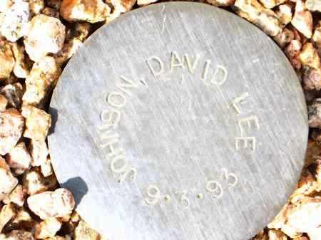 JOHNSON, DAVID LEE - Maricopa County, Arizona | DAVID LEE JOHNSON - Arizona Gravestone Photos