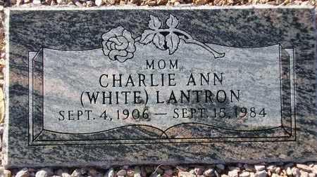 WHITE LANTRON, CHARLIE ANN - Maricopa County, Arizona | CHARLIE ANN WHITE LANTRON - Arizona Gravestone Photos