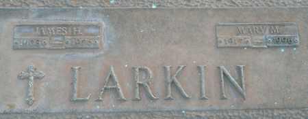 LARKIN, JAMES H. - Maricopa County, Arizona | JAMES H. LARKIN - Arizona Gravestone Photos