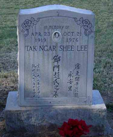 LEE, TAK NGAR - Maricopa County, Arizona | TAK NGAR LEE - Arizona Gravestone Photos