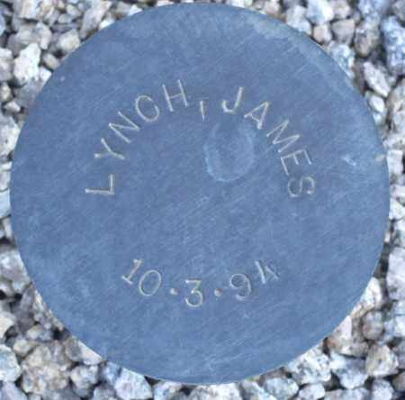 LYNCH, JAMES - Maricopa County, Arizona | JAMES LYNCH - Arizona Gravestone Photos