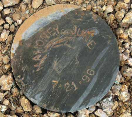 MAHONEY, JUNE - Maricopa County, Arizona   JUNE MAHONEY - Arizona Gravestone Photos