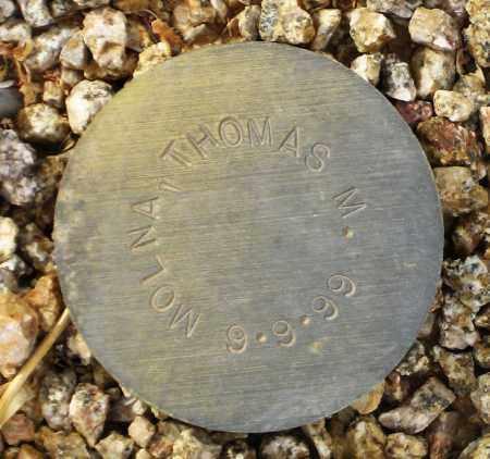 MOLINA, THOMAS M. - Maricopa County, Arizona | THOMAS M. MOLINA - Arizona Gravestone Photos