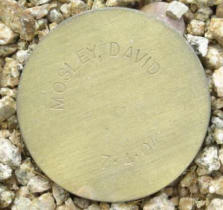 MOSLEY, DAVID - Maricopa County, Arizona | DAVID MOSLEY - Arizona Gravestone Photos