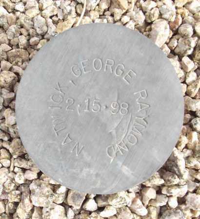 NATWICK, GEORGE RAYMOND - Maricopa County, Arizona | GEORGE RAYMOND NATWICK - Arizona Gravestone Photos