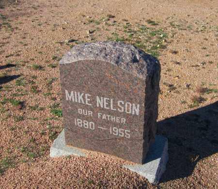 NELSON, MIKE - Maricopa County, Arizona | MIKE NELSON - Arizona Gravestone Photos