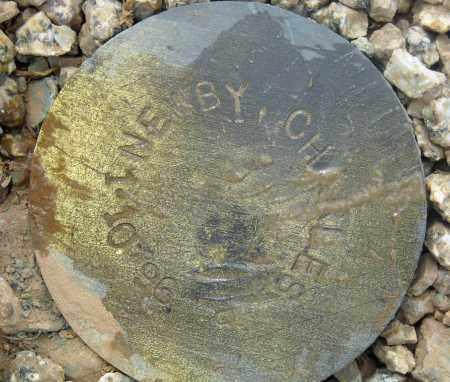 NEWBY, CHARLES - Maricopa County, Arizona | CHARLES NEWBY - Arizona Gravestone Photos