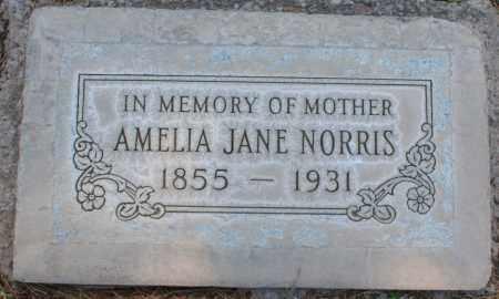 NORRIS, AMELIA JANE - Maricopa County, Arizona | AMELIA JANE NORRIS - Arizona Gravestone Photos
