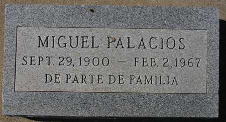 PALACIOS, MIGUEL - Maricopa County, Arizona | MIGUEL PALACIOS - Arizona Gravestone Photos