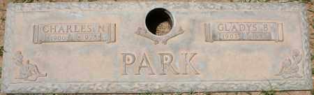 PARK, CHARLES N. - Maricopa County, Arizona | CHARLES N. PARK - Arizona Gravestone Photos