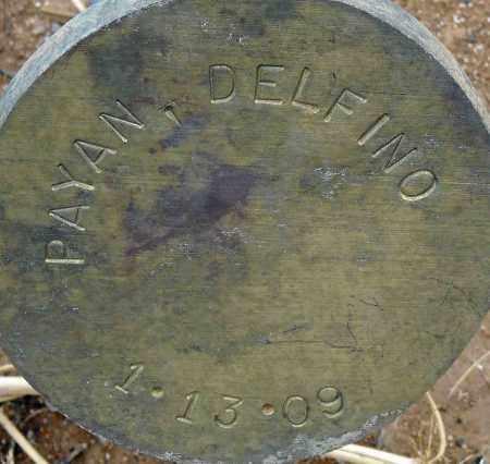 PAYAN, DELFINO - Maricopa County, Arizona | DELFINO PAYAN - Arizona Gravestone Photos