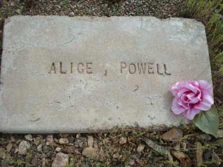 POWELL, ALICE - Maricopa County, Arizona | ALICE POWELL - Arizona Gravestone Photos