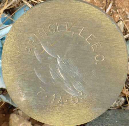 PRINGLE, LEE C. - Maricopa County, Arizona | LEE C. PRINGLE - Arizona Gravestone Photos