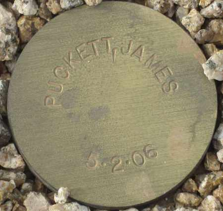 PUCKETT, JAMES - Maricopa County, Arizona | JAMES PUCKETT - Arizona Gravestone Photos