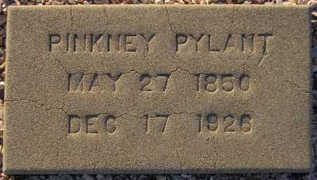 PYLANT, PINKNEY - Maricopa County, Arizona | PINKNEY PYLANT - Arizona Gravestone Photos