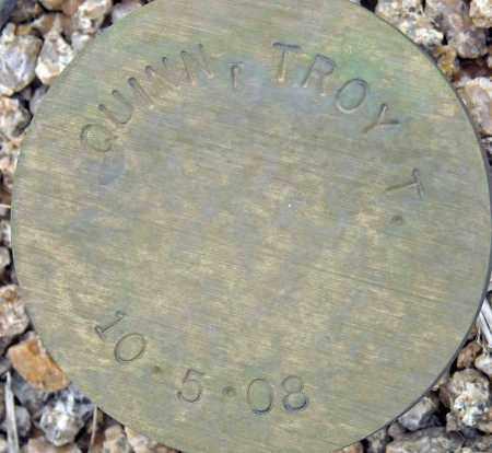 QUINN, TROY T. - Maricopa County, Arizona | TROY T. QUINN - Arizona Gravestone Photos