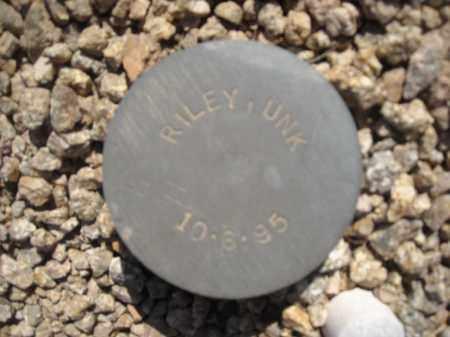 RILEY, UNK - Maricopa County, Arizona | UNK RILEY - Arizona Gravestone Photos