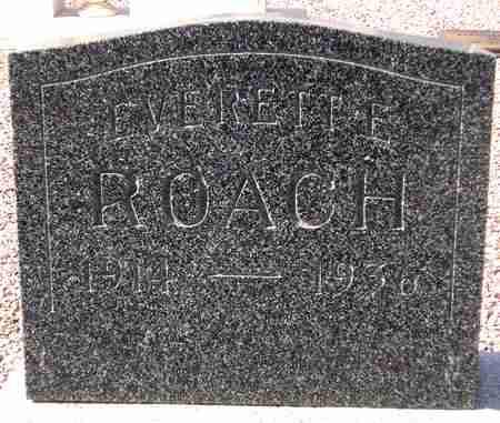 ROACH, EVERETTE - Maricopa County, Arizona | EVERETTE ROACH - Arizona Gravestone Photos
