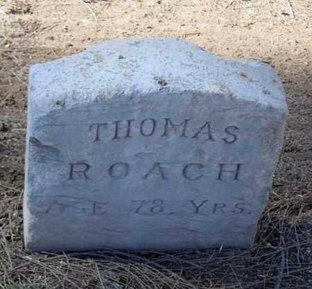 ROACH, THOMAS - Maricopa County, Arizona | THOMAS ROACH - Arizona Gravestone Photos