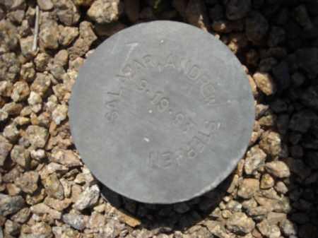 SALAZAR, ANDREW STEPHEN - Maricopa County, Arizona | ANDREW STEPHEN SALAZAR - Arizona Gravestone Photos