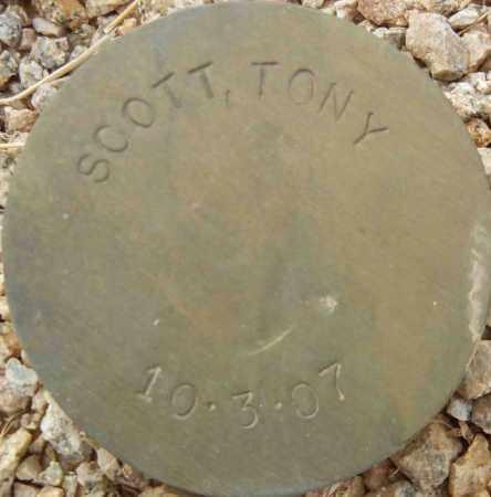 SCOTT, TONY - Maricopa County, Arizona | TONY SCOTT - Arizona Gravestone Photos