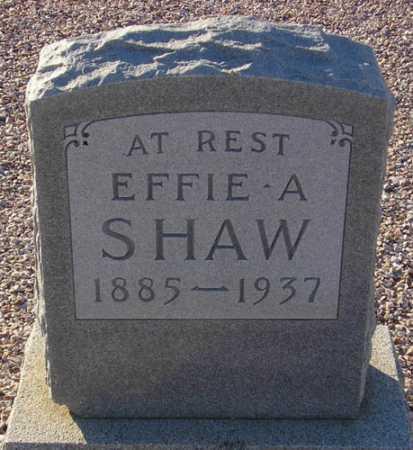 PAYNE SHAW, EFFIE A. - Maricopa County, Arizona | EFFIE A. PAYNE SHAW - Arizona Gravestone Photos